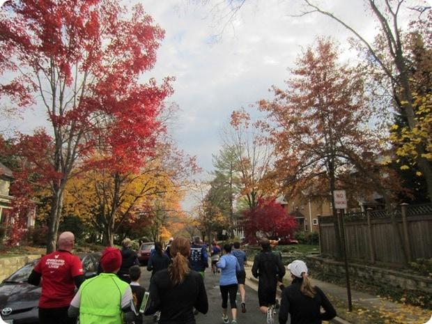 alexandria 5 mile turkey trot