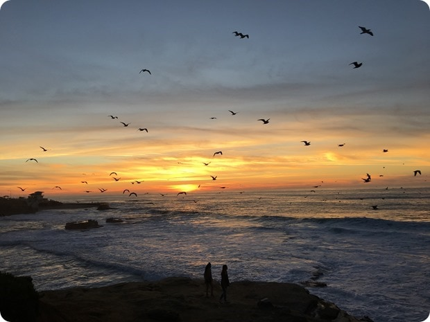 sunset la jolla cove