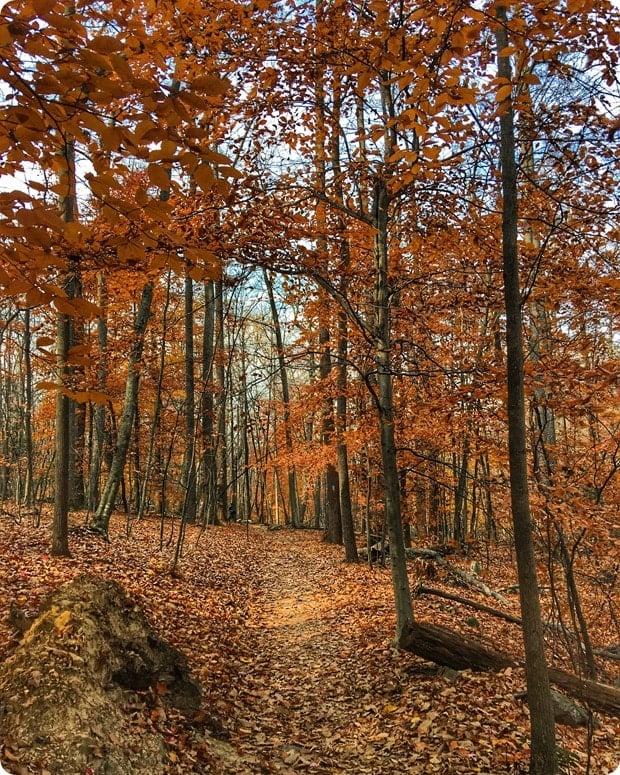 hiking fall sugarloaf mountain