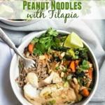 Peanut Noodles with Tilapia