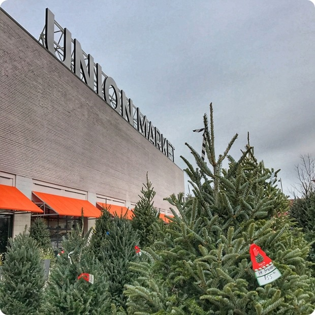 union market dc christmas trees