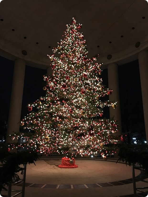 canadian embassy christmas tree