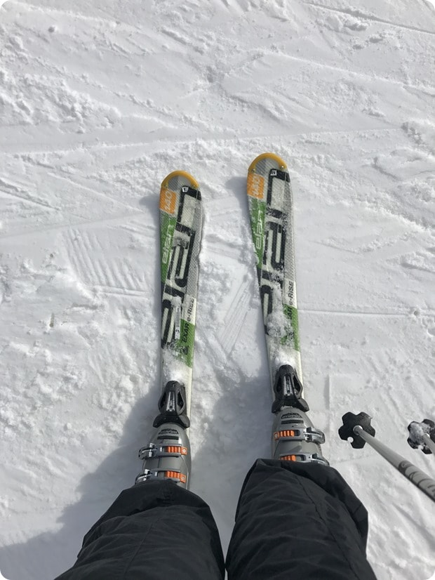 skiing whitetail