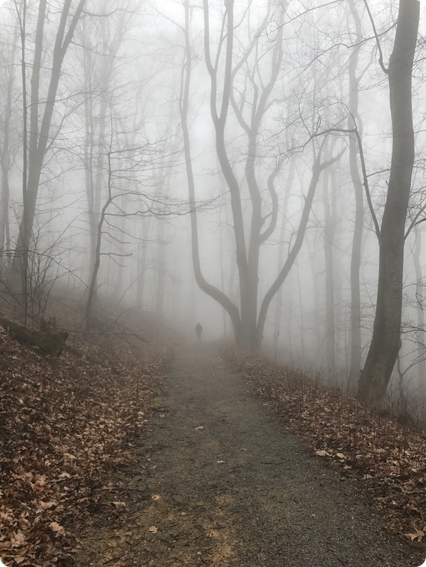 shenandoah hike fog