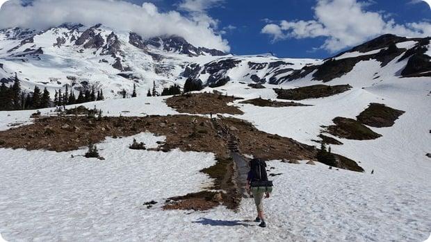mt rainier hike muir snowfields