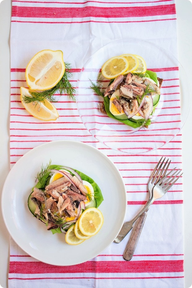 scandinavian sardine sandwich 1