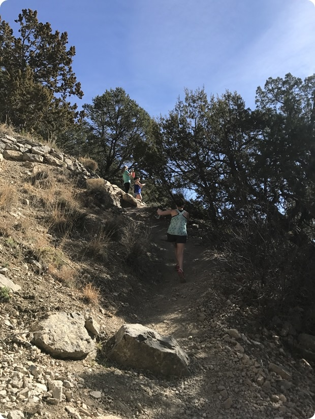 cibola national forest hike