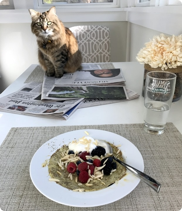 breakfast with a cat
