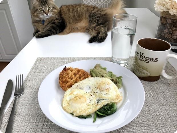 savory waffle eggs