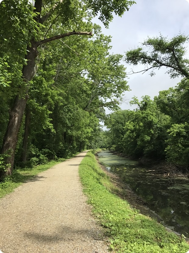 c&o canal trail running