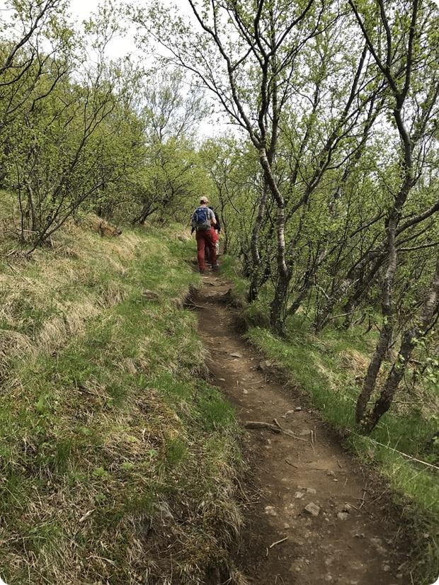 skaftafell hiking