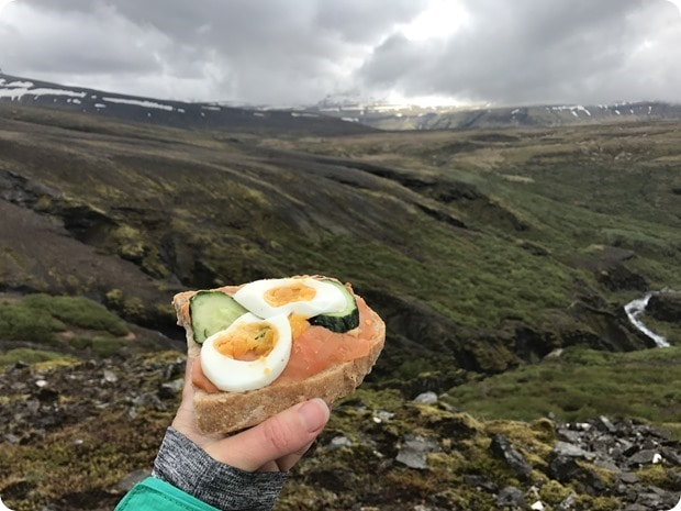 packed lunch iceland