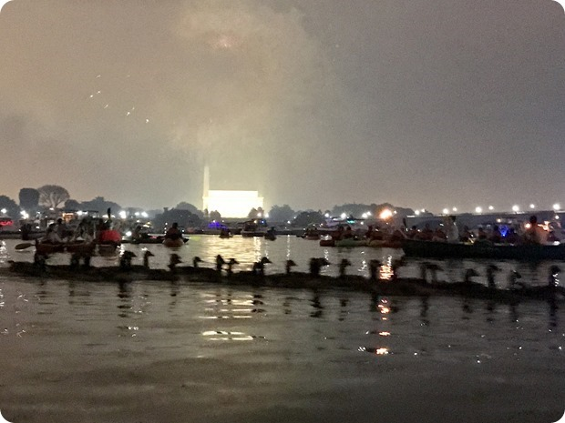 geese with fireworks on potomac river