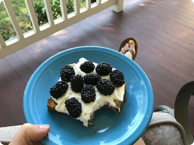 toast with nut butter yogurt fruit