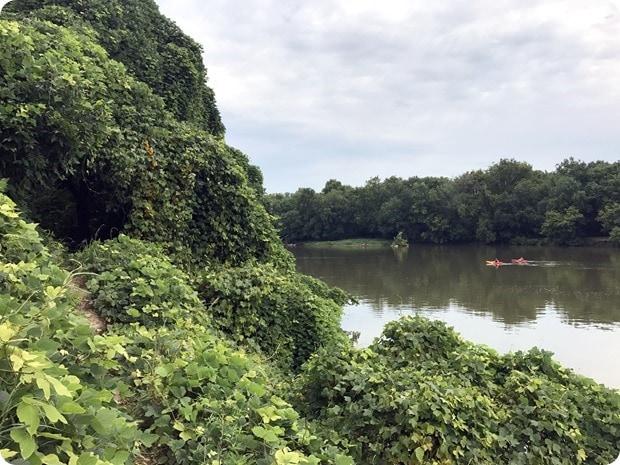 trail jogging potomac river overlook