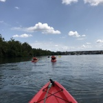 Kayaking + Food Highlights