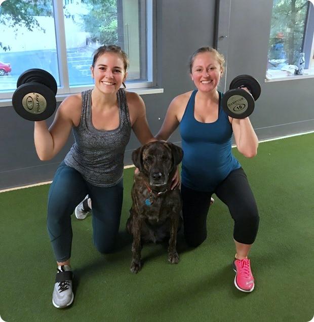 bodymass gym flex the dog