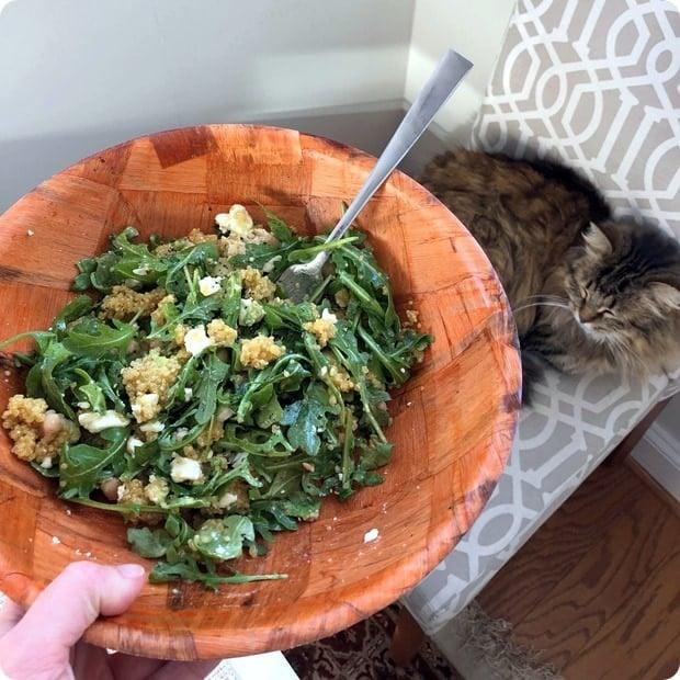 orange quinoa salad