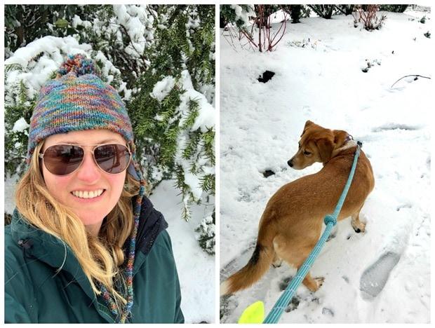 arlington va snow day
