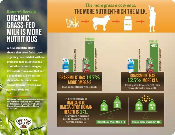 differences between grass and grain fed dairy infographic