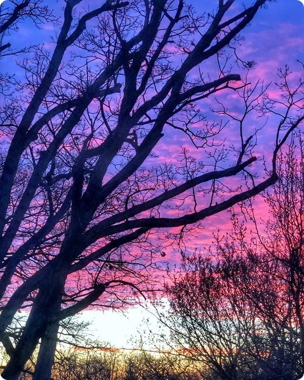 gorgeous morning sunrise