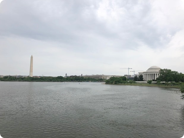 running around the tidal basin in dc