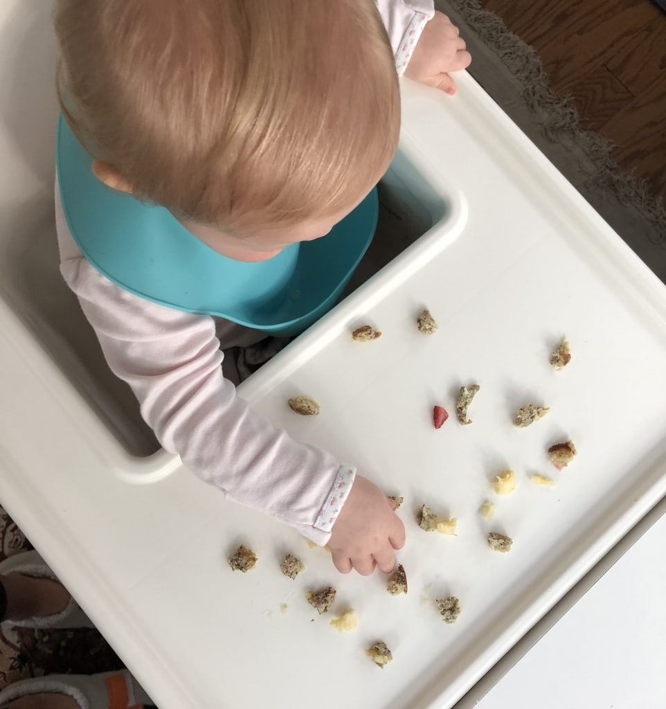 baby led weaning ideas 10 month old
