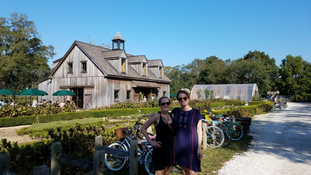 beach plum farm cape may