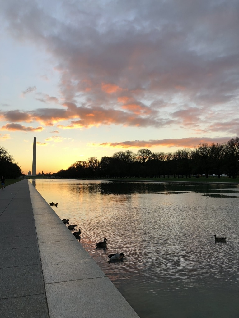 tidal basin dc sunrise view