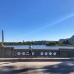 bridge loop run DC