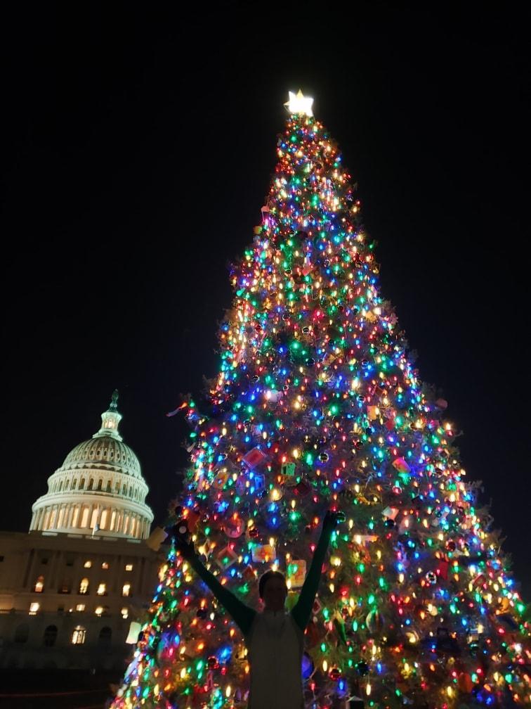 christmas tree light run around DC
