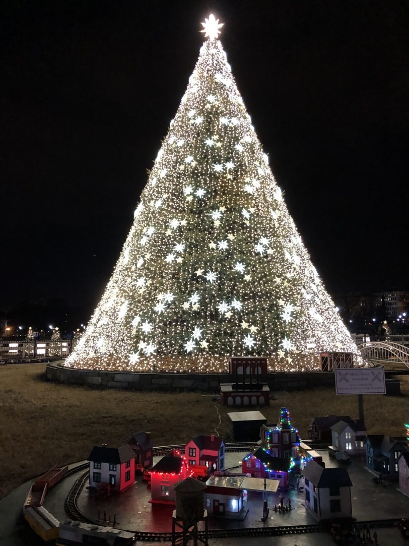 dc christmas national tree