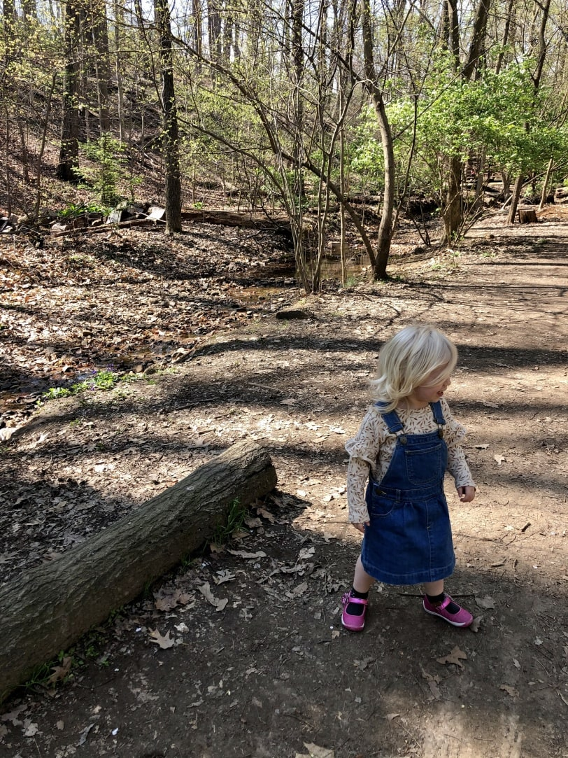 toddler hiking in the woods