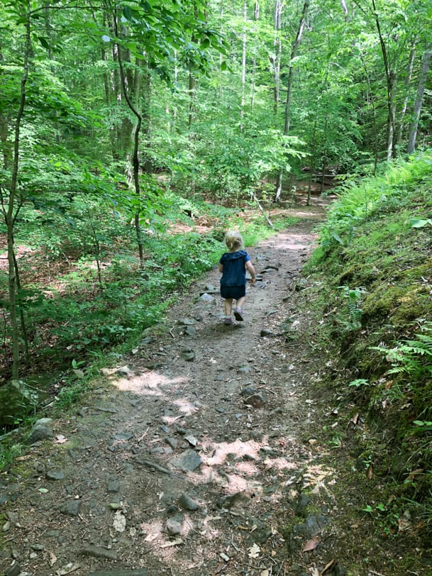 toddler hiking in the woods on a trail