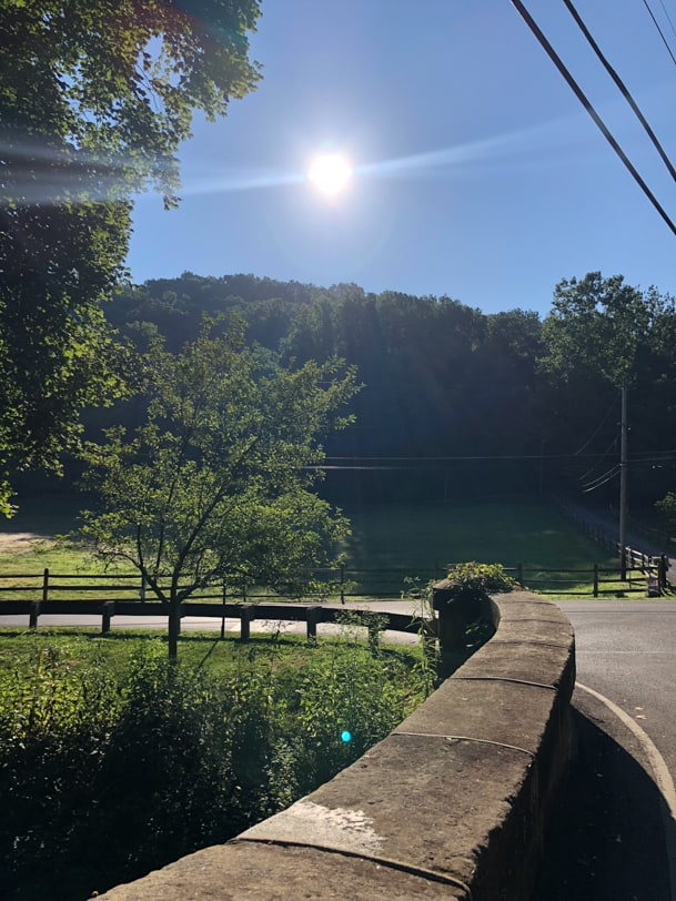 sunny morning in sewickley pa