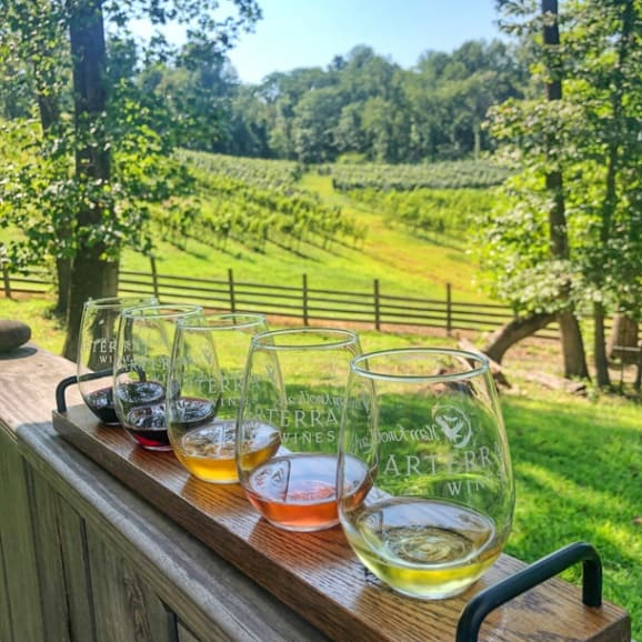 arterra winery virginia