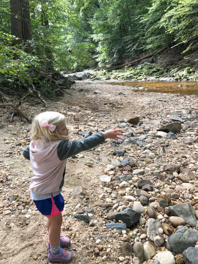 throwing rocks into a stream