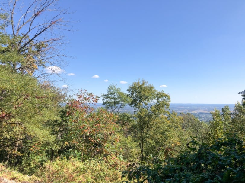 overlook view in catoctin mountain park