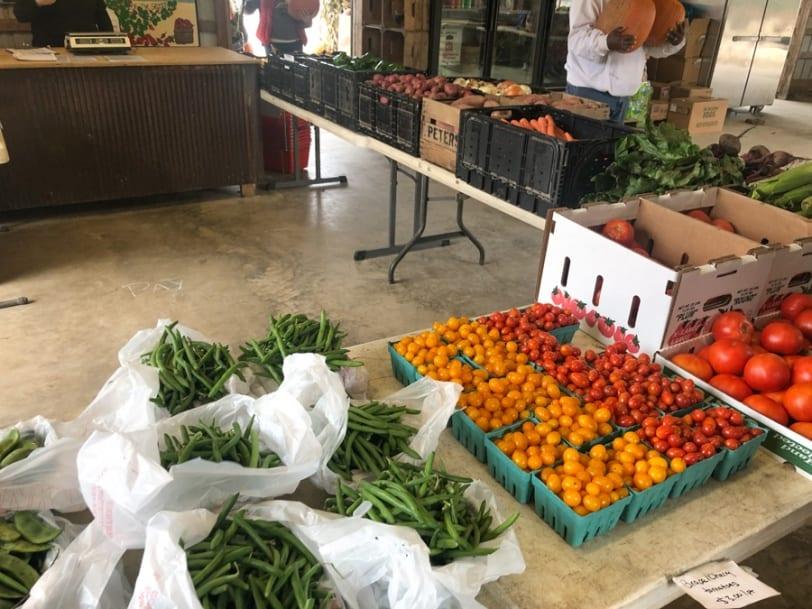 schlagel farms produce