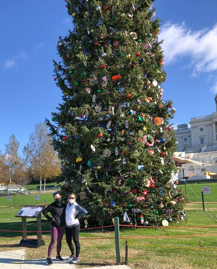capitol christmas tree 2020