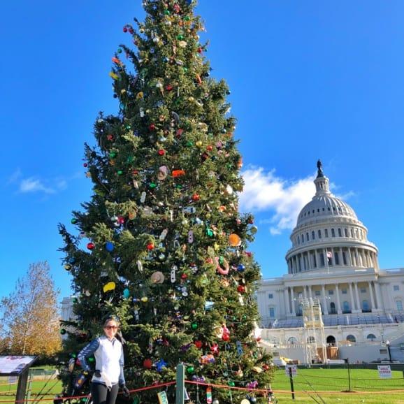 capitol christmas tree 2020