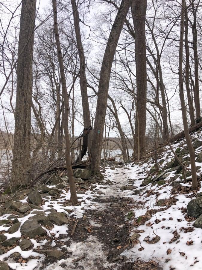 turkey run park in winter