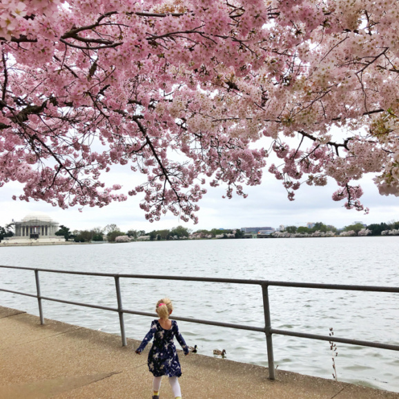 toddler running towards the cherry blossoms
